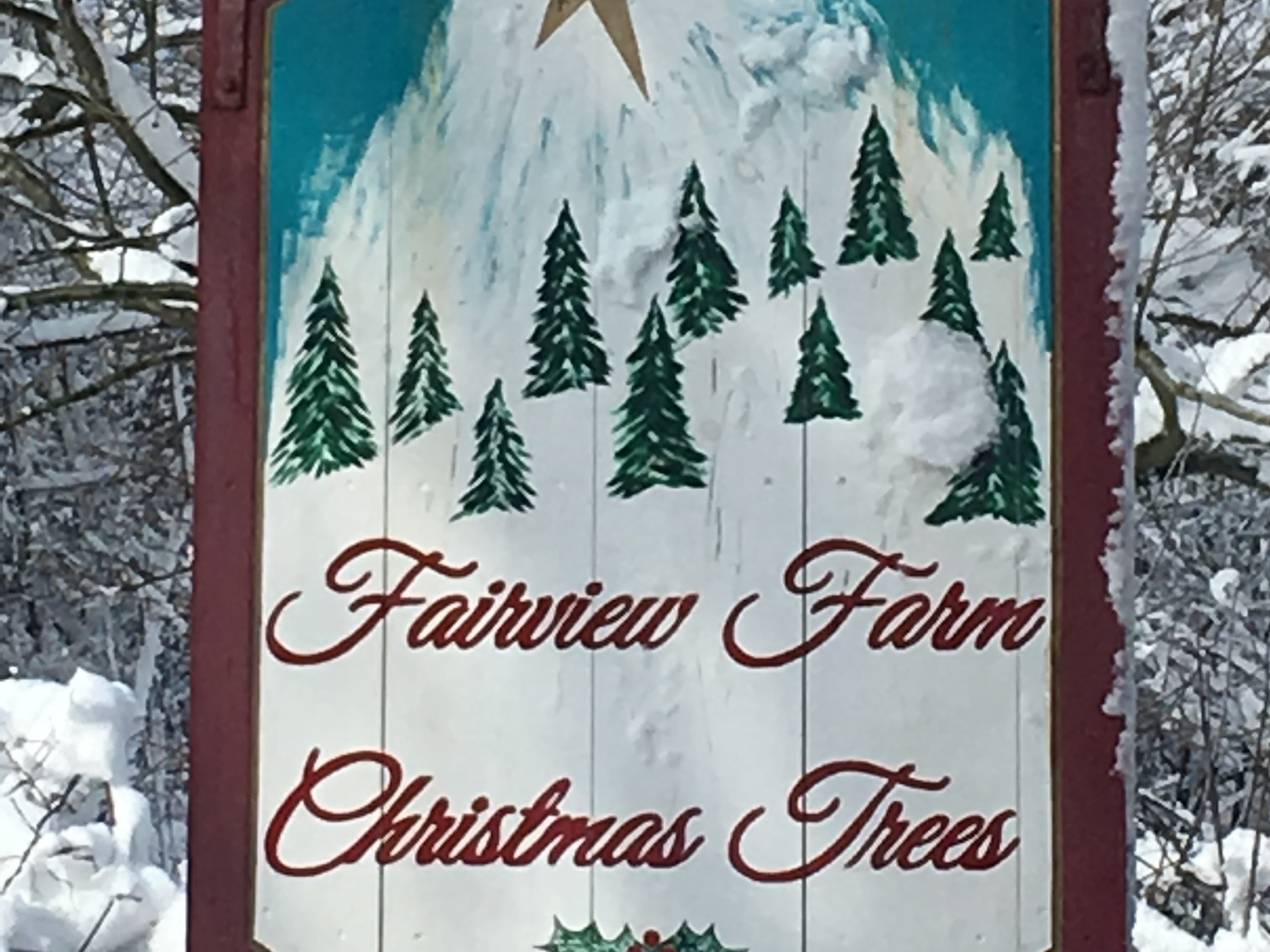 Fairview Farm Christmas Trees, 91 E. Mill Rd., Long Valley. Fairview Farm has cut-your-own Concolor Fir, Fraser Fir, Canaan Fir, Balsam Fir and Balsam-Fraser Hybrid Fir. Mrs. Claus frequently stops by with hot cocoa and farm-baked cookies at their large gift shop filled with decorations, wreaths and stands.