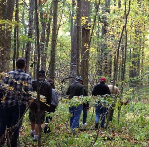 In the mood for a fall hike? Red-tail has the perfect woods to visit