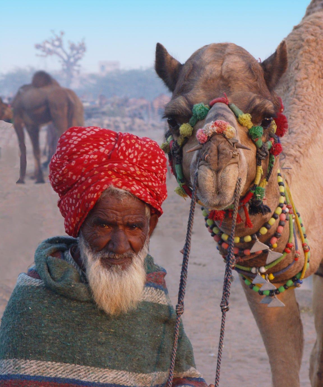 Camel vendor at Pushkar Fair