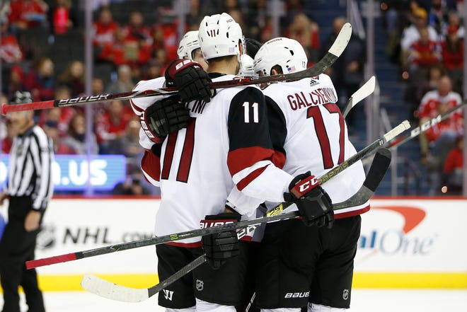 Nov 11, 2018; Washington, DC, USA; Arizona Coyotes center Alex Galchenyuk (17) celebrates with teammates after scoring a goal past Washington Capitals goaltender Braden Holtby (70) during the second period at Capital One Arena. Mandatory Credit: Amber Searls-USA TODAY Sports
