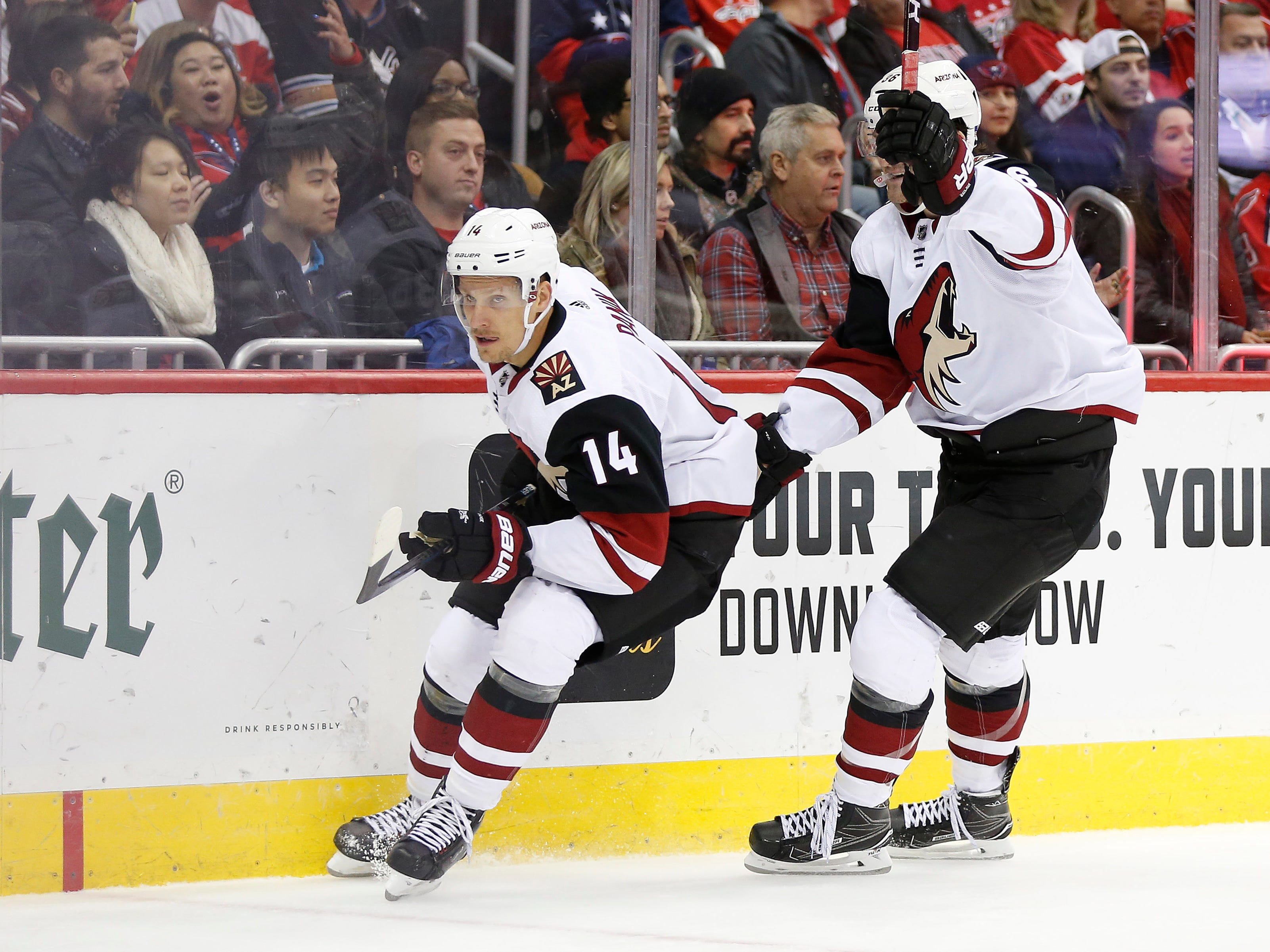 Nov 11, 2018; Washington, DC, USA; Arizona Coyotes right wing Richard Panik (14) celebrates with Arizona Coyotes right wing Christian Fischer (36) after scoring a goal during the second period against the Washington Capitals at Capital One Arena. Mandatory Credit: Amber Searls-USA TODAY Sports