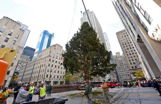 The 2018 Rockefeller Center Christmas tree is a 72-foot-tall, 12-ton Norway spruce.
