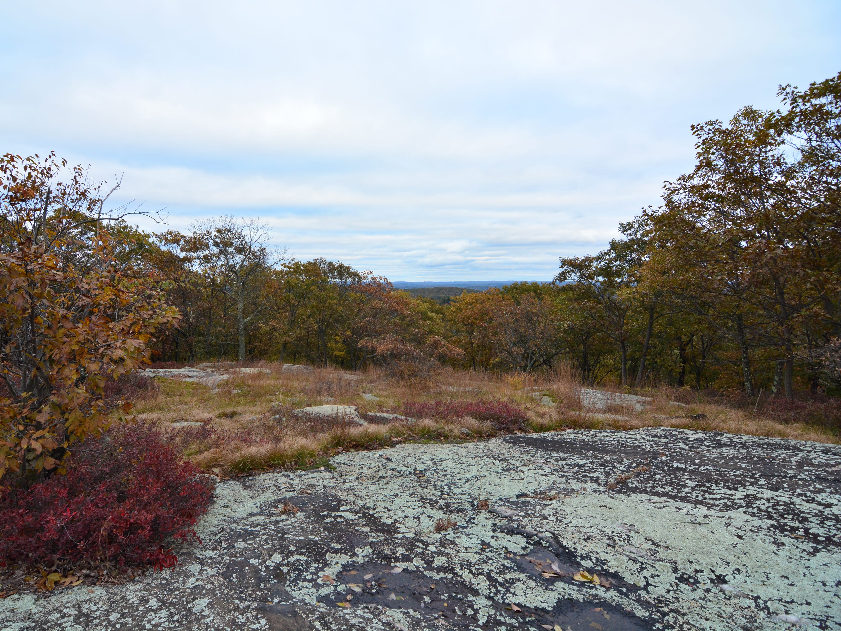 Turkey Mountain an easy hike that rewards with scenic views from the top