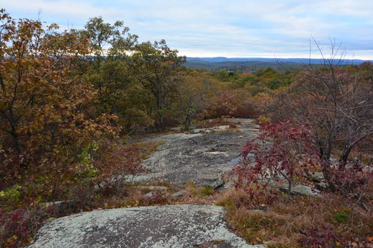 Savor the views from the top of Turkey Mountain, which is a mild hike to the top.