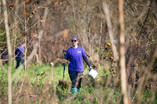 Transource Energy volunteers plant seedlings on Nov. 8, 2018, in Spring Valley Park, York County.