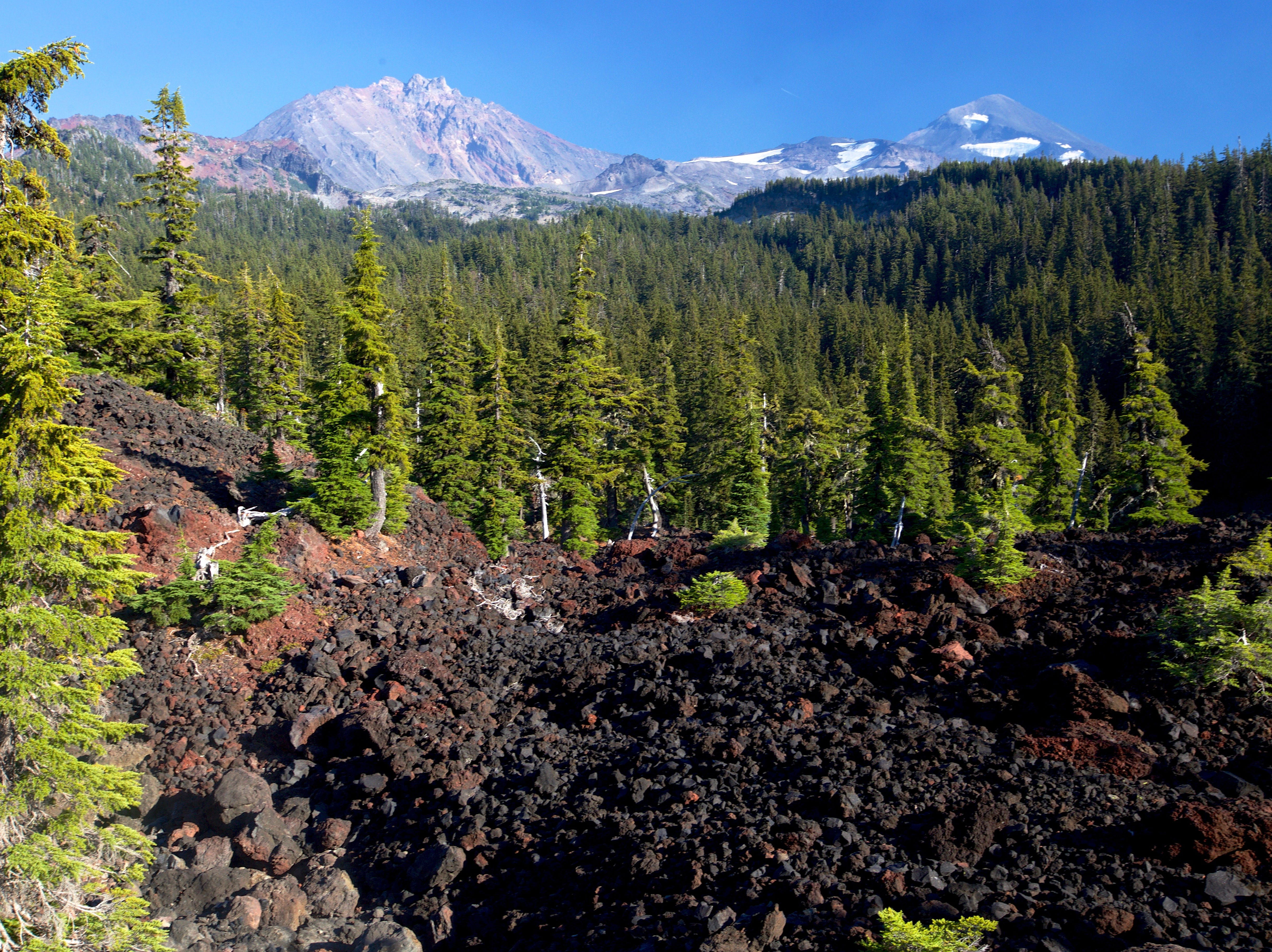 View of North and Middle Sister from Obsidian Trail in the Three Sisters Wilderness.