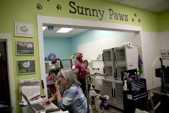 Groomers take care of pets on Monday, Nov. 12, 2018. Employees of Nature's Pet Market & Sunny Paws Grooming are using the OregonSaves retirement program.