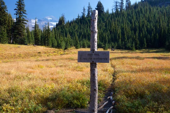 Some areas on Obsidian Trail remain closed to help generate forest impacted by overuse.