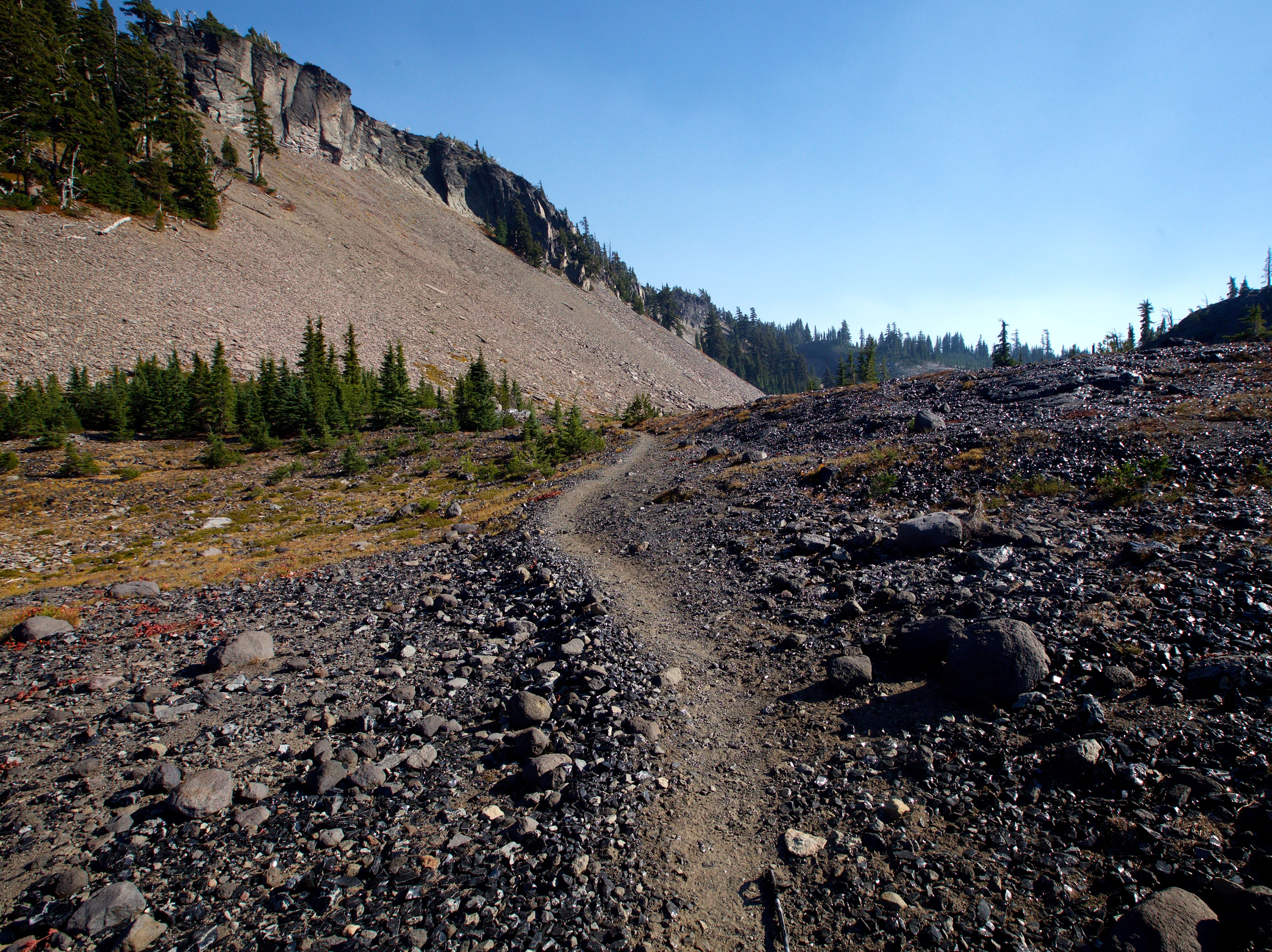 The reason Obsidian Trail has its name is the rich assortment of obsidian glass rock that is found throughout the hike.