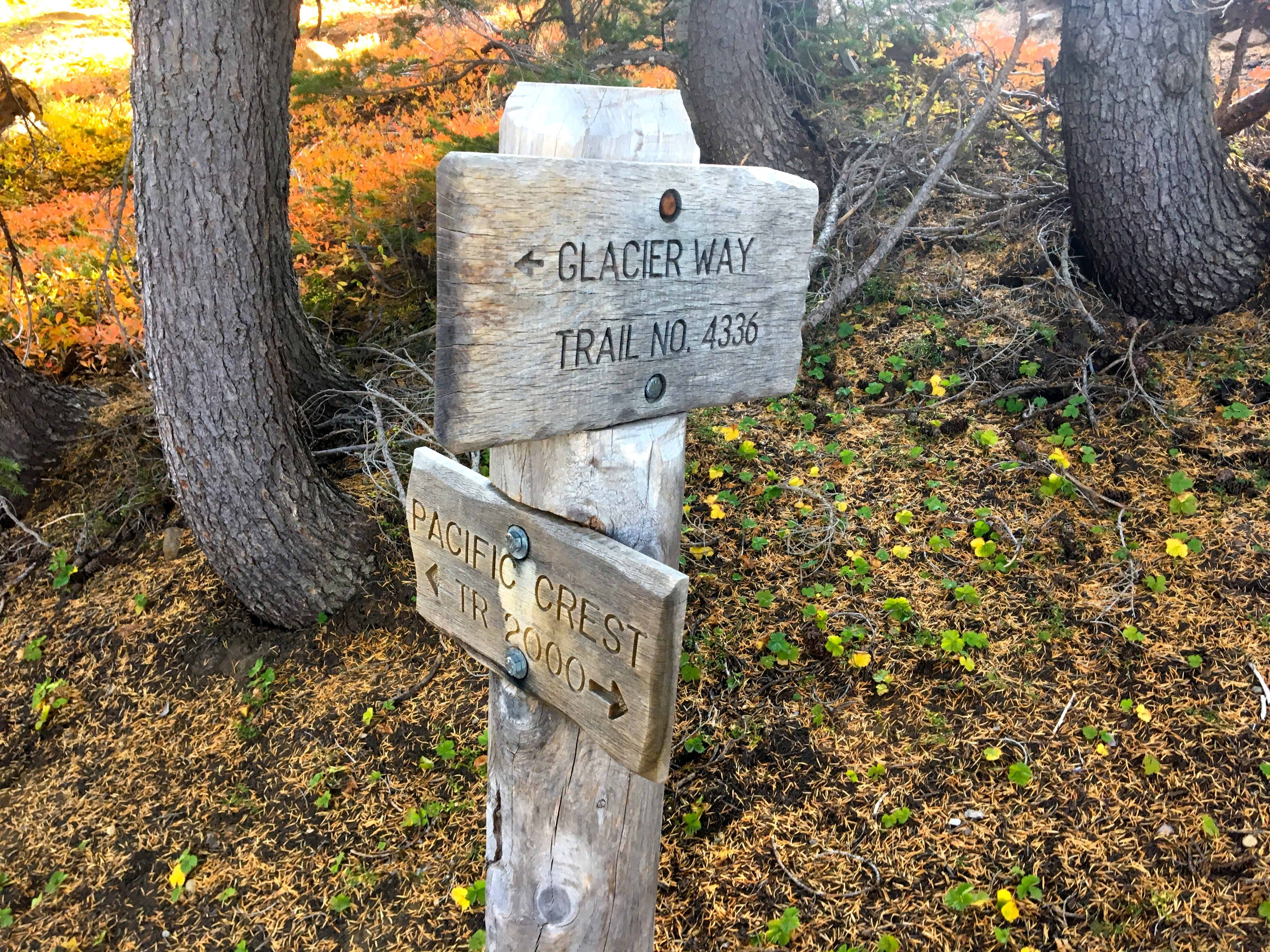 The Pacific Crest Trail and Glacier Way trail are both part of the Obsidian Limited Entry Area.
