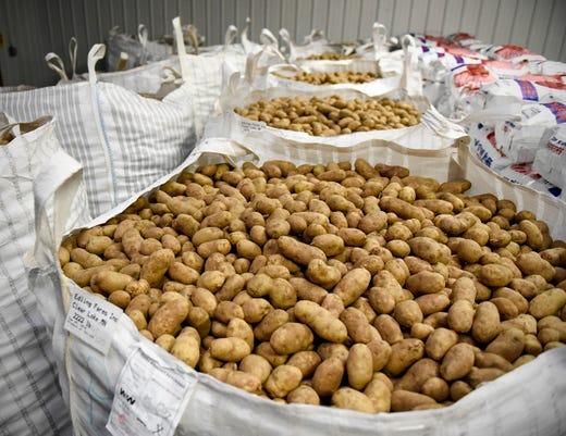 Potato Donation 4