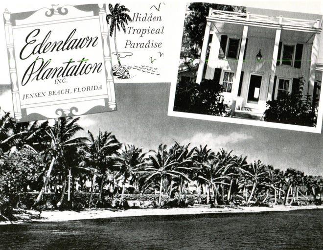Edenlawn Plantation in the 1950s.