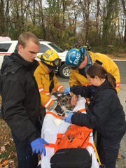 Paramedics labor over a cat injured in a fire in Ogletown Monday.