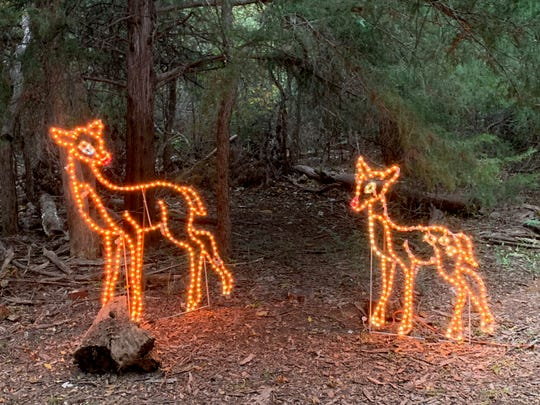 ElectriCritters: A Lighted Christmas Display opens tonight from 6:30 to 8:30 p.m. at the River Bend Nature Center. It will be closed Saturday and then open Friday and Saturday nights through December 22
