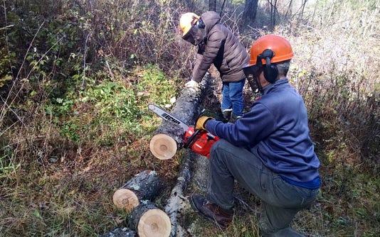 Wsf 1116 Apps Making Wood