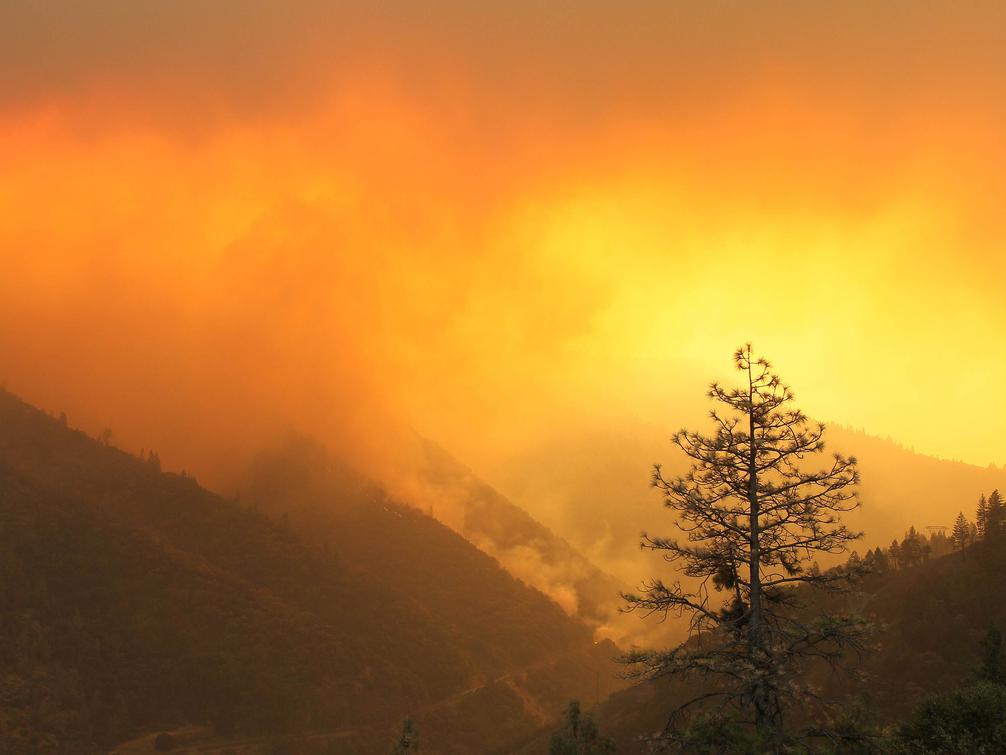 Smoke rises above the Plumas National Forrest near Concow, Calif. on Nov. 11, 2018.
