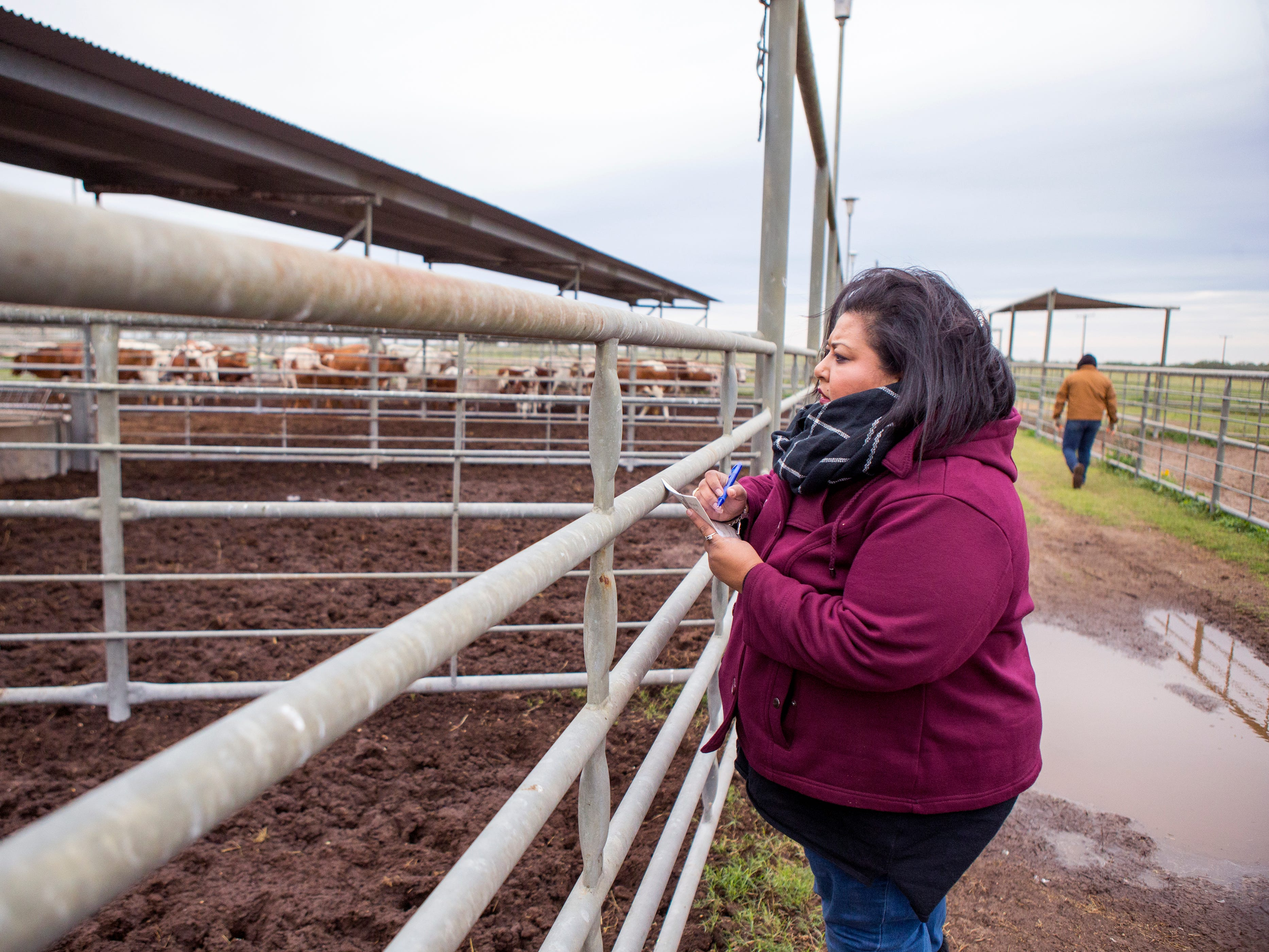 Della Serna follows father's ranching footsteps on a ranch near Kingsville she grew up on