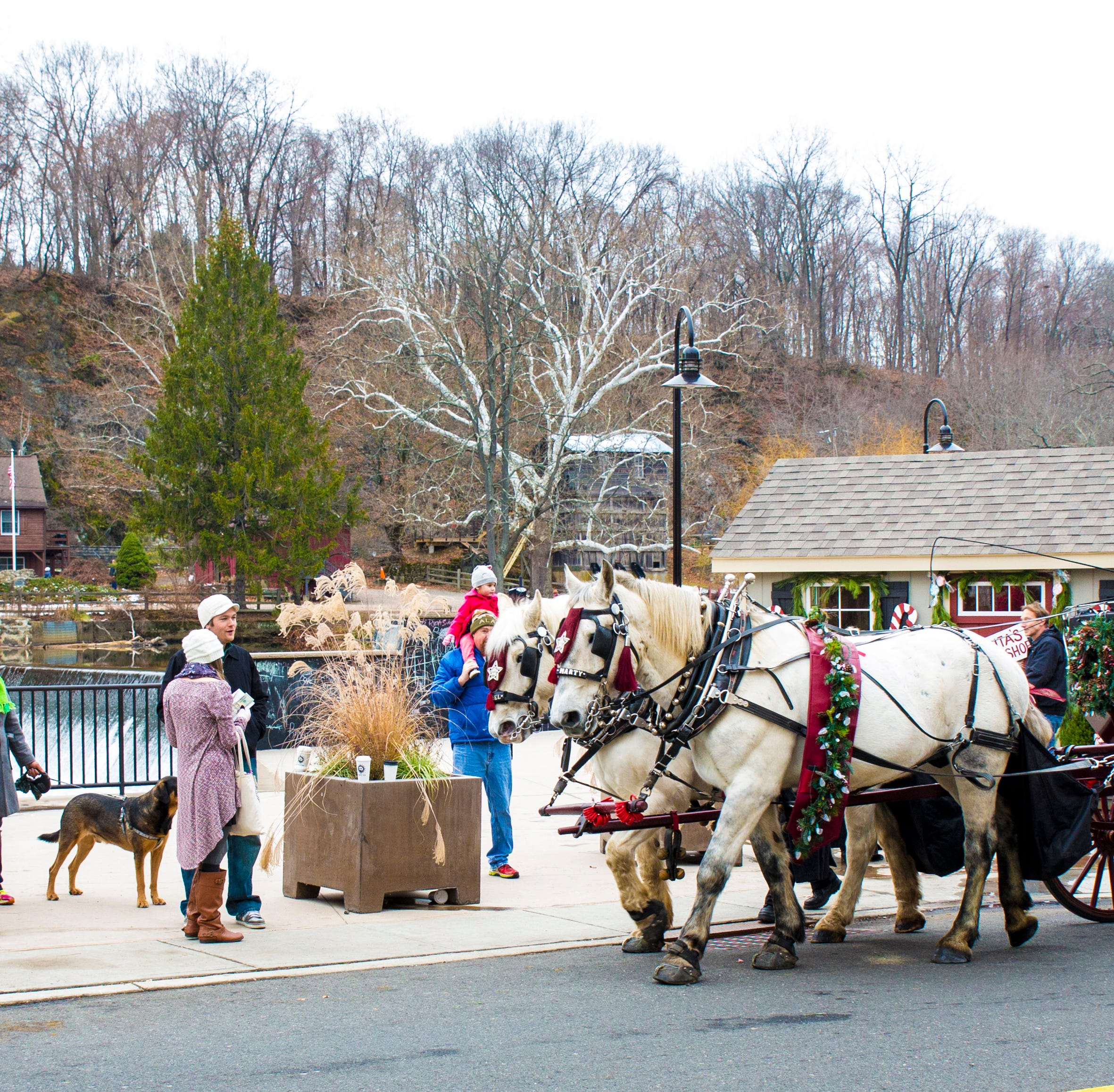 Horse-drawn carriage rides are part of the old-fashioned fun during Dickens Days in Clinton.