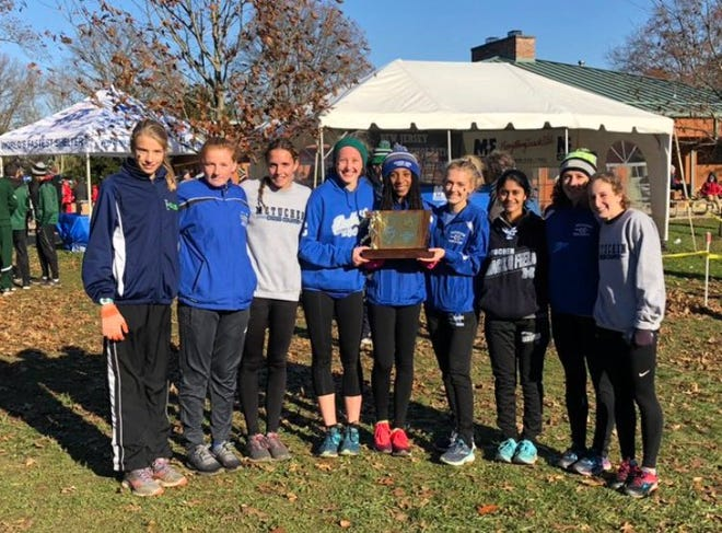 Metuchen poses after winning the Group II title on Nov. 10, 2018.