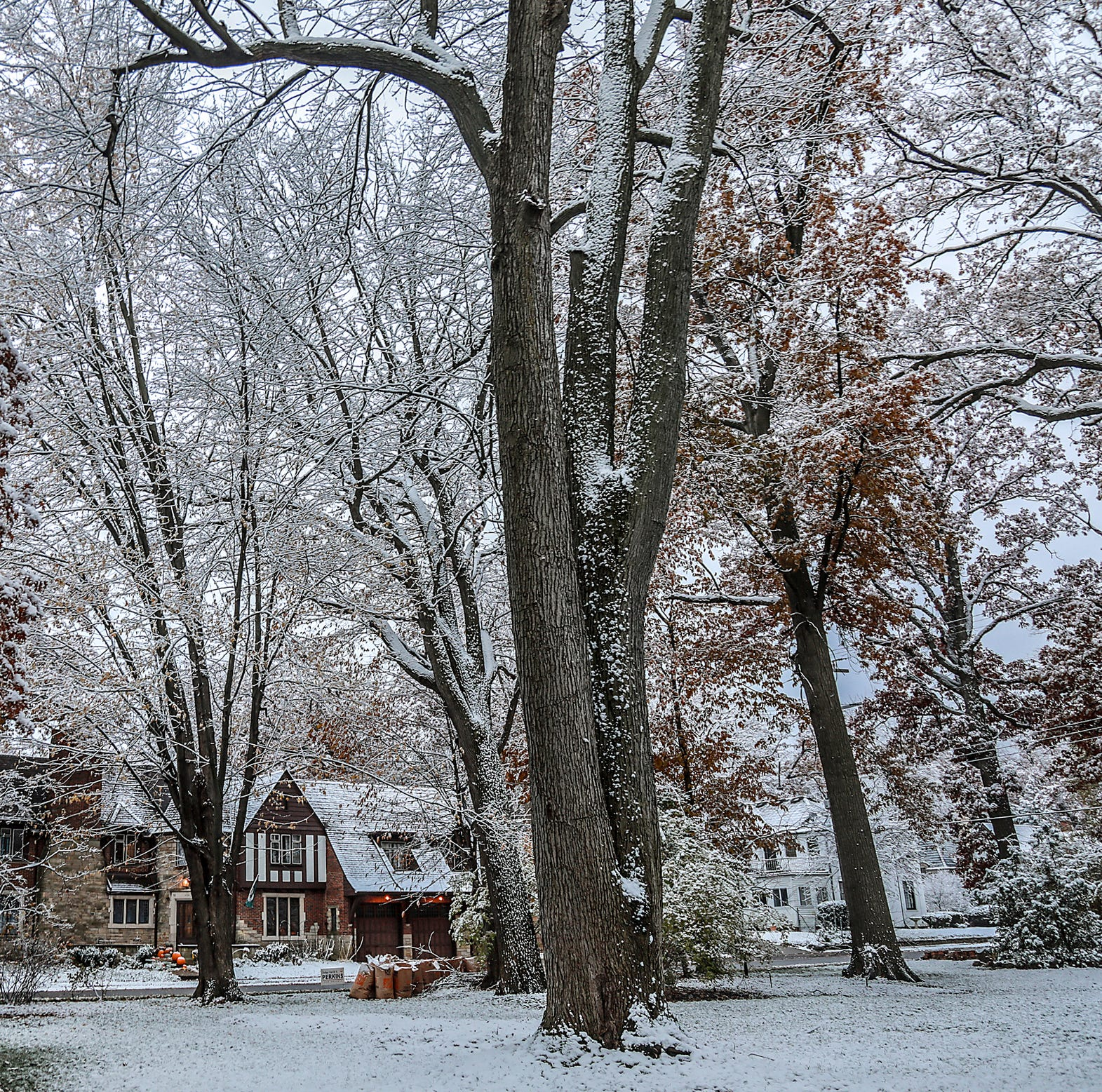 Thanksgiving weather in metro Detroit expected to be coldest in 5 years