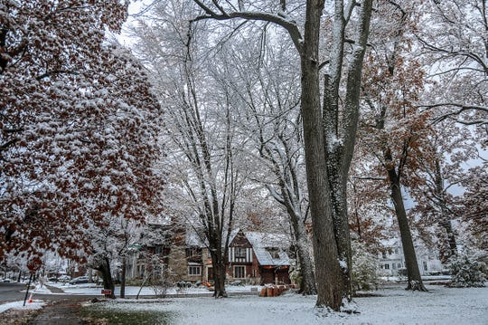 A fresh dusting of snow is seen in Detroit on Tuesday morning, Nov. 13, 2018.