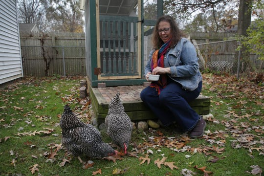 Courtney Wooten feeds her two Plymouth Barred Rock chickens at her home in Berkley on Monday, Nov. 12, 2018.