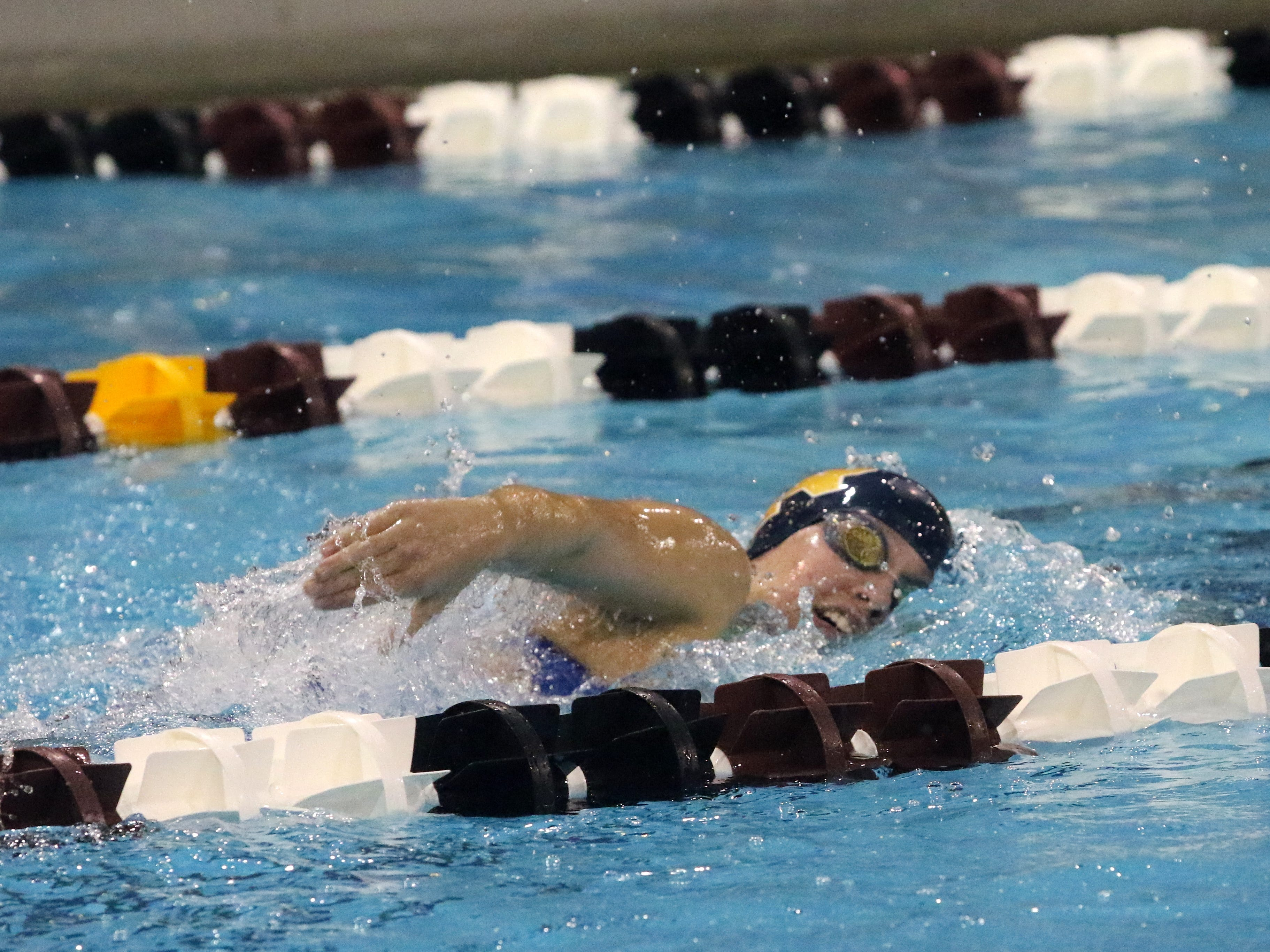 Girls swimming and diving: END's Craig, Owego trio among Section 4 hopefuls at state meet