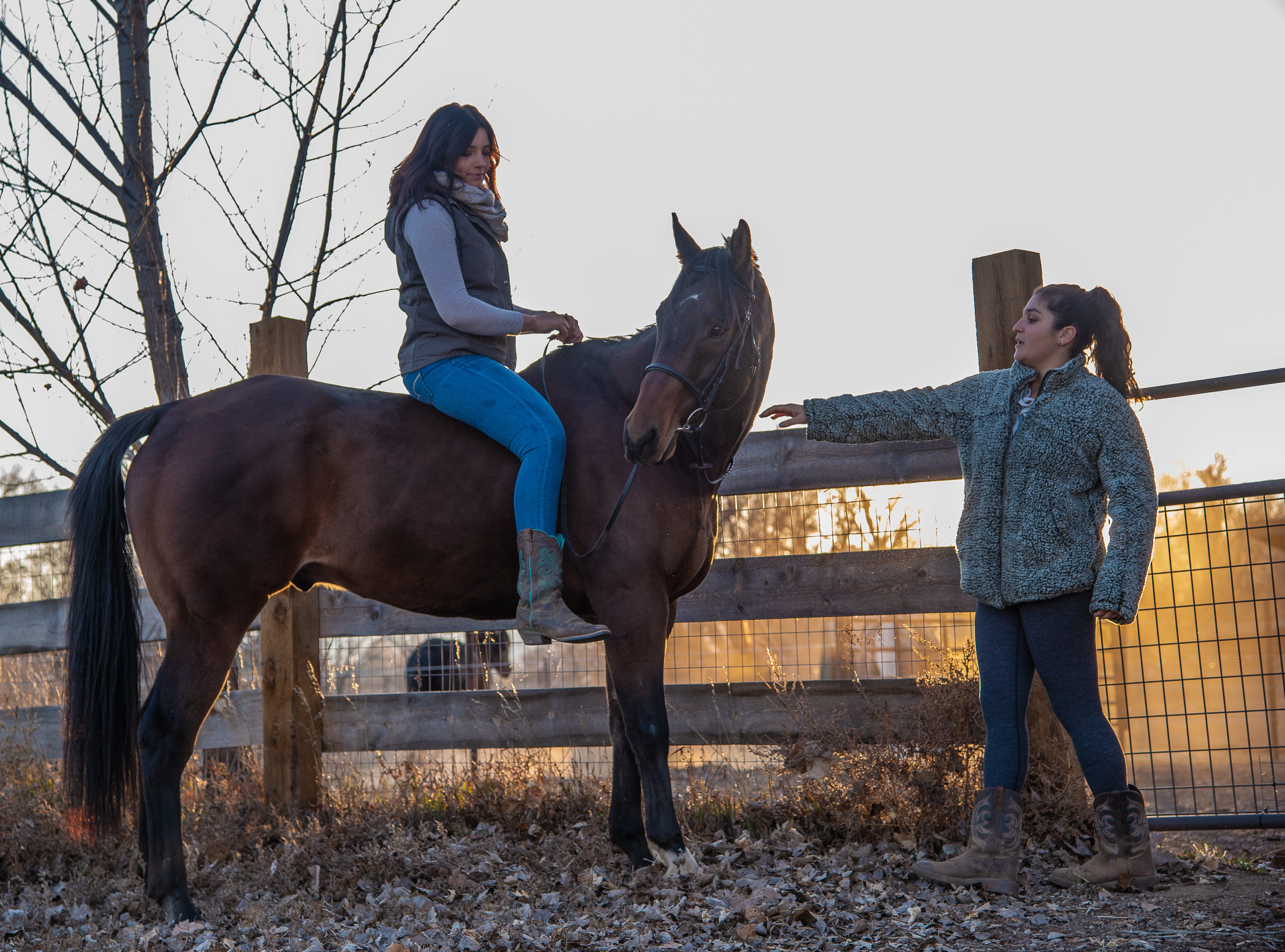 CSU student Kassidy Webber prepares to take Chance, her rescue horse,  for a ride in north Fort Collins on Thursday, November 8, 2018. Friend and fellow CSU student Tori Cayle gives Chance some attention before he begins his ride.