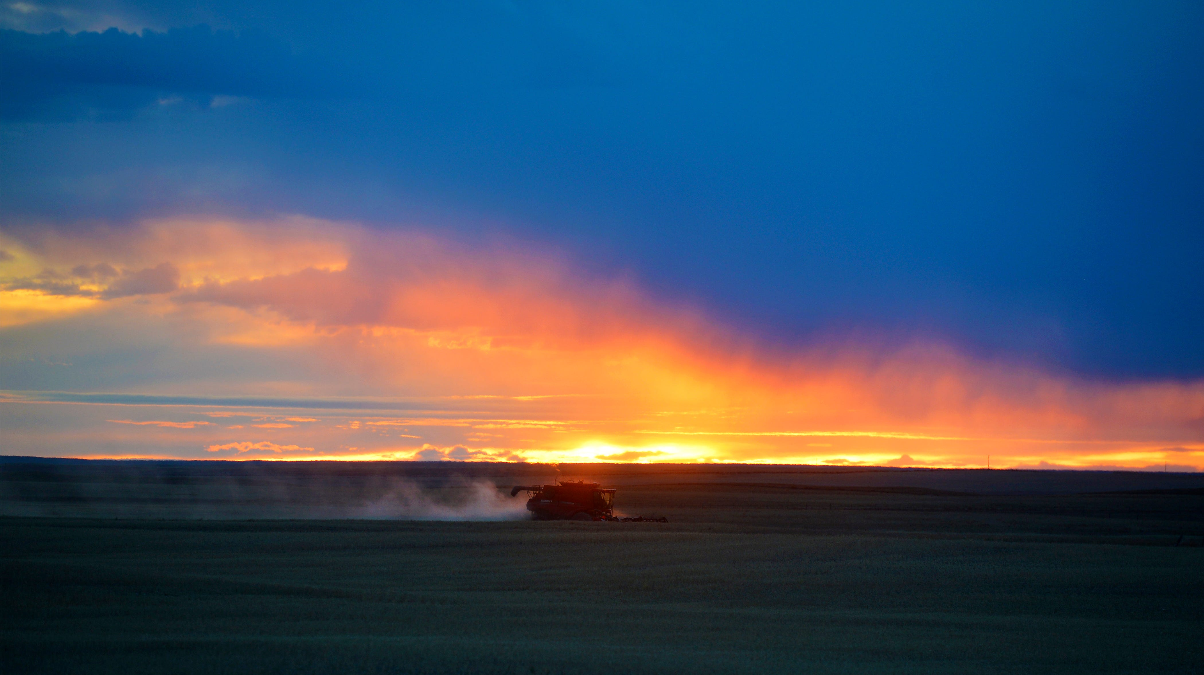 A combine operates in a field adjacent to the planned route of the Keystone XL Pipeline in northern Phillips County.