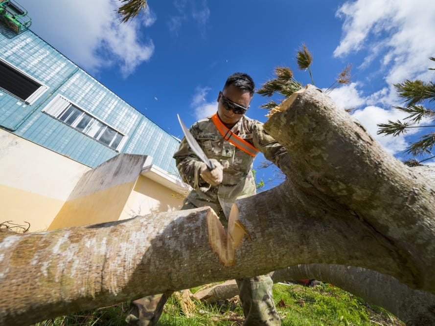 Guam Army National Guardsman Spc. Kent Manglona, 1224th Engineer Support Company engineer, shows the tree who's boss during debris clean-up in the village of Susupe, Saipan, Commonwealth of the Northern Mariana Islands, Nov. 9, 2018, as part of the Super Typhoon Yutu relief effort.
