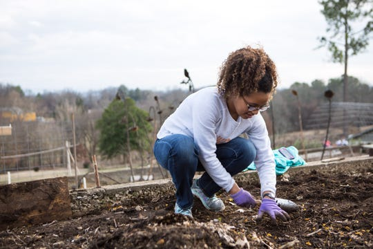 UT students volunteered at the Knoxville Botanical Garden in 2017.