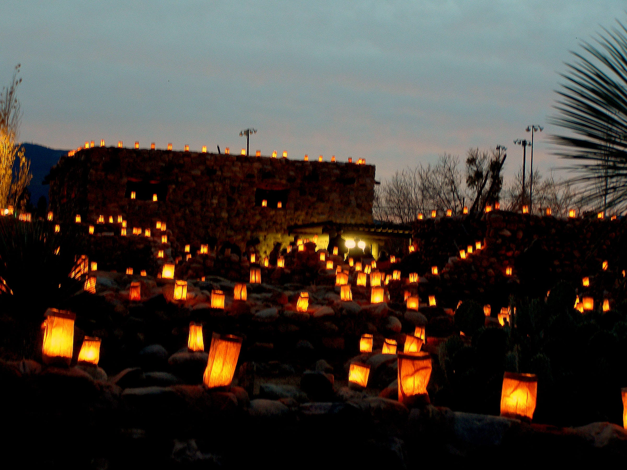 Luminarias Snuffed Out By Turkey Basters At Desert Botanical Garden