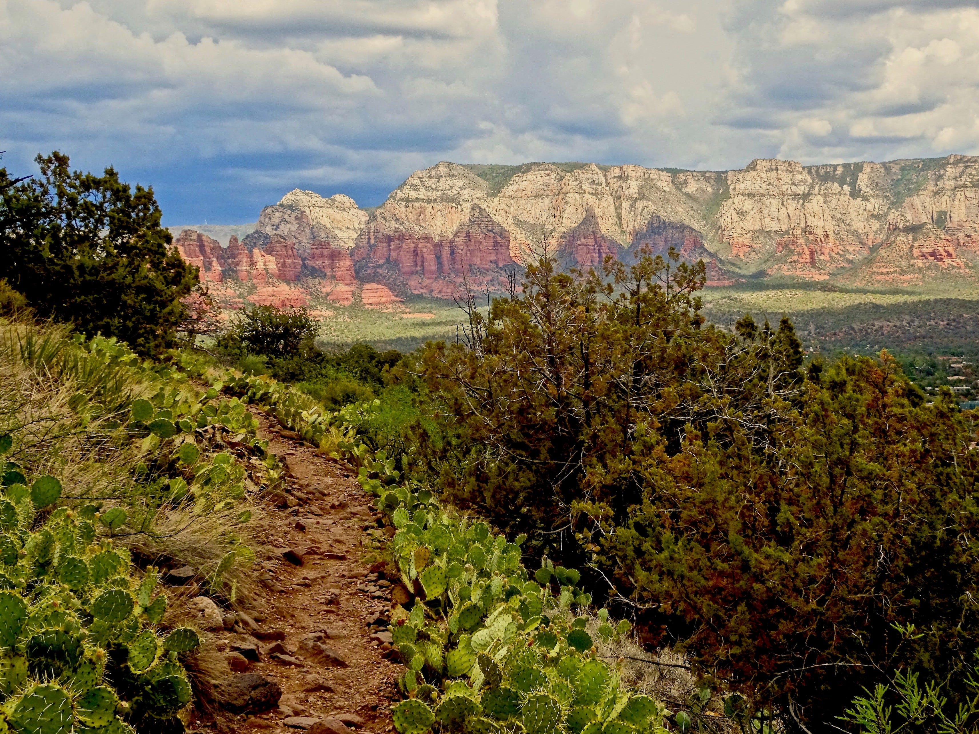 A series of trails form a moderate loop around the shoulder of Airport Mesa in Sedona.