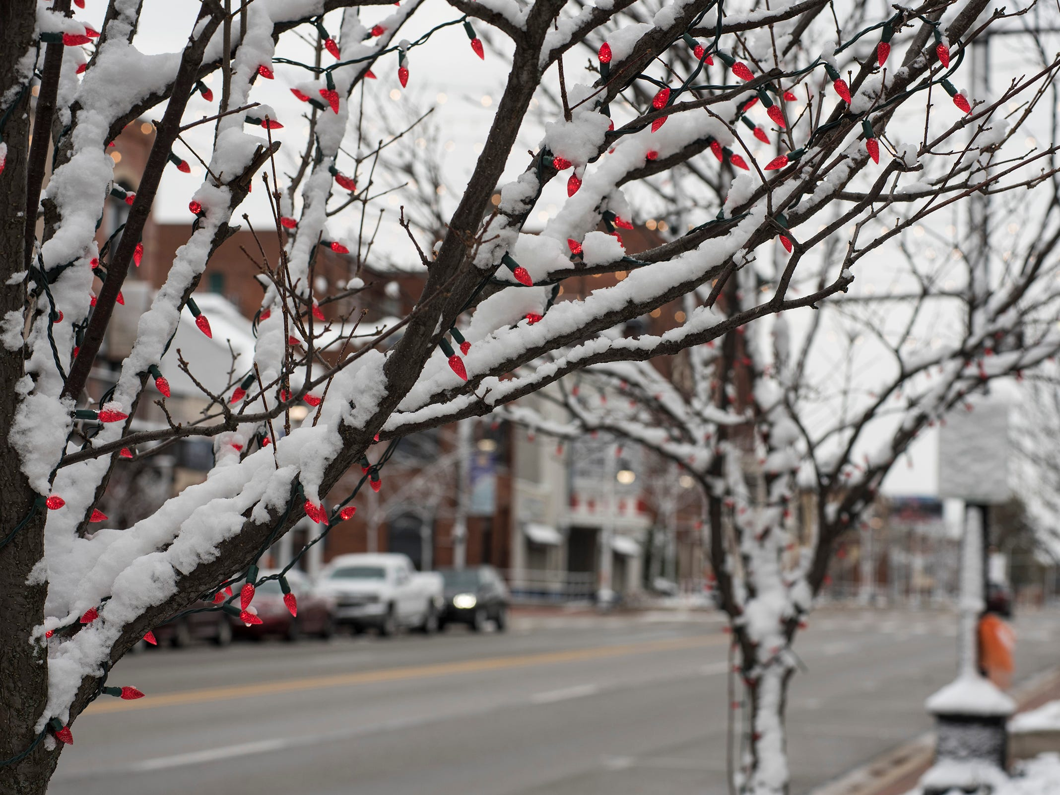 Snow surrounds red Christmas lights strung throughout trees in downtown Port Huron Tuesday, Nov. 13, 2018.