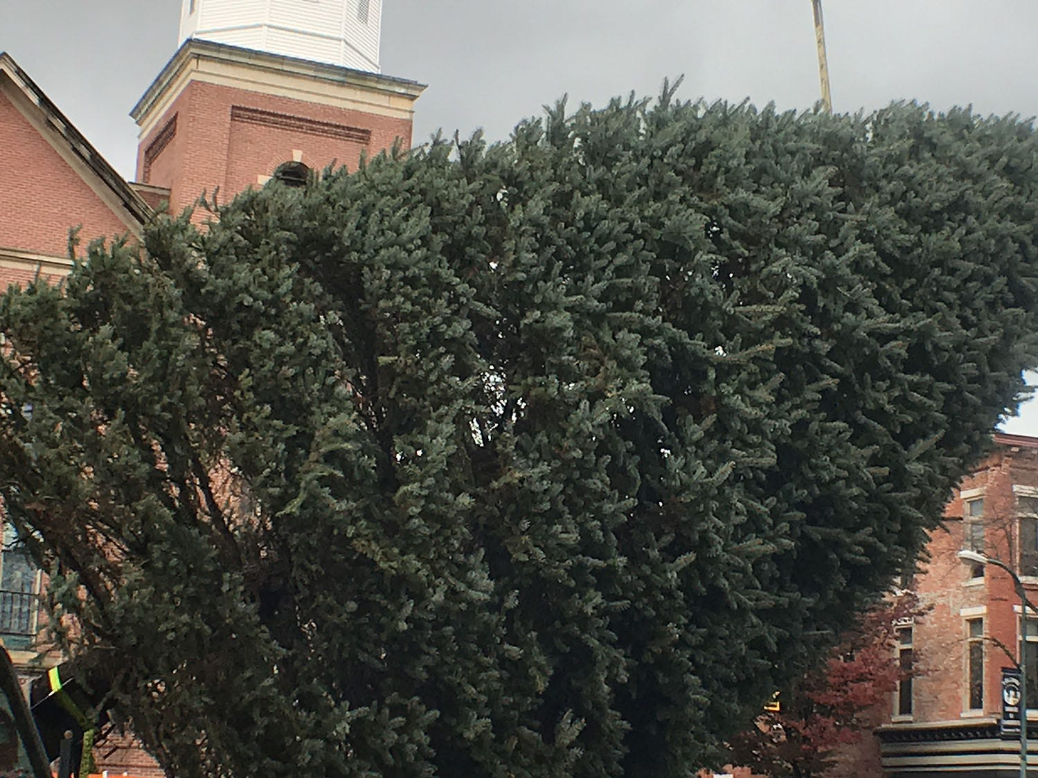 Borough of Chambersburg worker, with assistance from Cumberland Valley Tree Service, installed a 20 foot blue spruce Christmas tree on the southeast corner of Memorial Square on Tuesday morning, November 13, 2018.