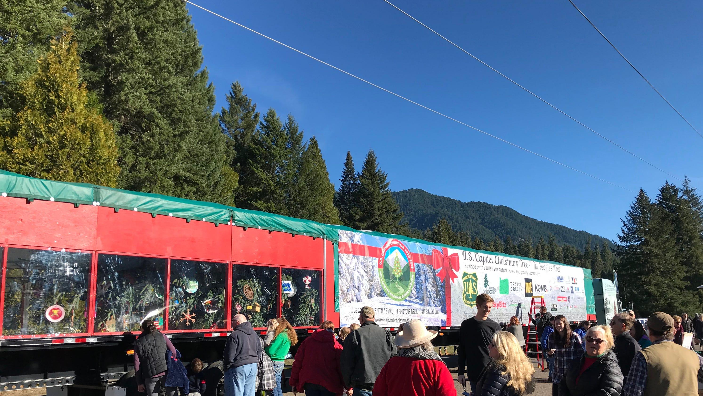 U.S. Capitol Christmas Tree cruises into Salem today, visits Capitol
