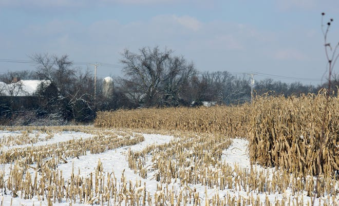 The cold snap is a bit of good news and bad news for farmers. The bitter cold has allowed farmers to enter unharvested fields that were to wet to drive in. Unfortunately, the wet grain may need more propane to dry, which is already in high demand across the Midwest.