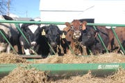 A grassroots environmental group in Iowa is concerned that winter manure spreading exemptions approved by the state will lead to water pollution.