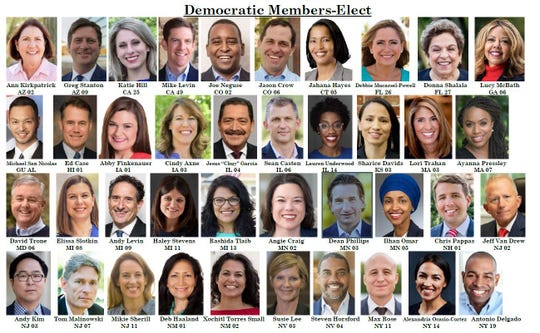 New Democrats elected to the House