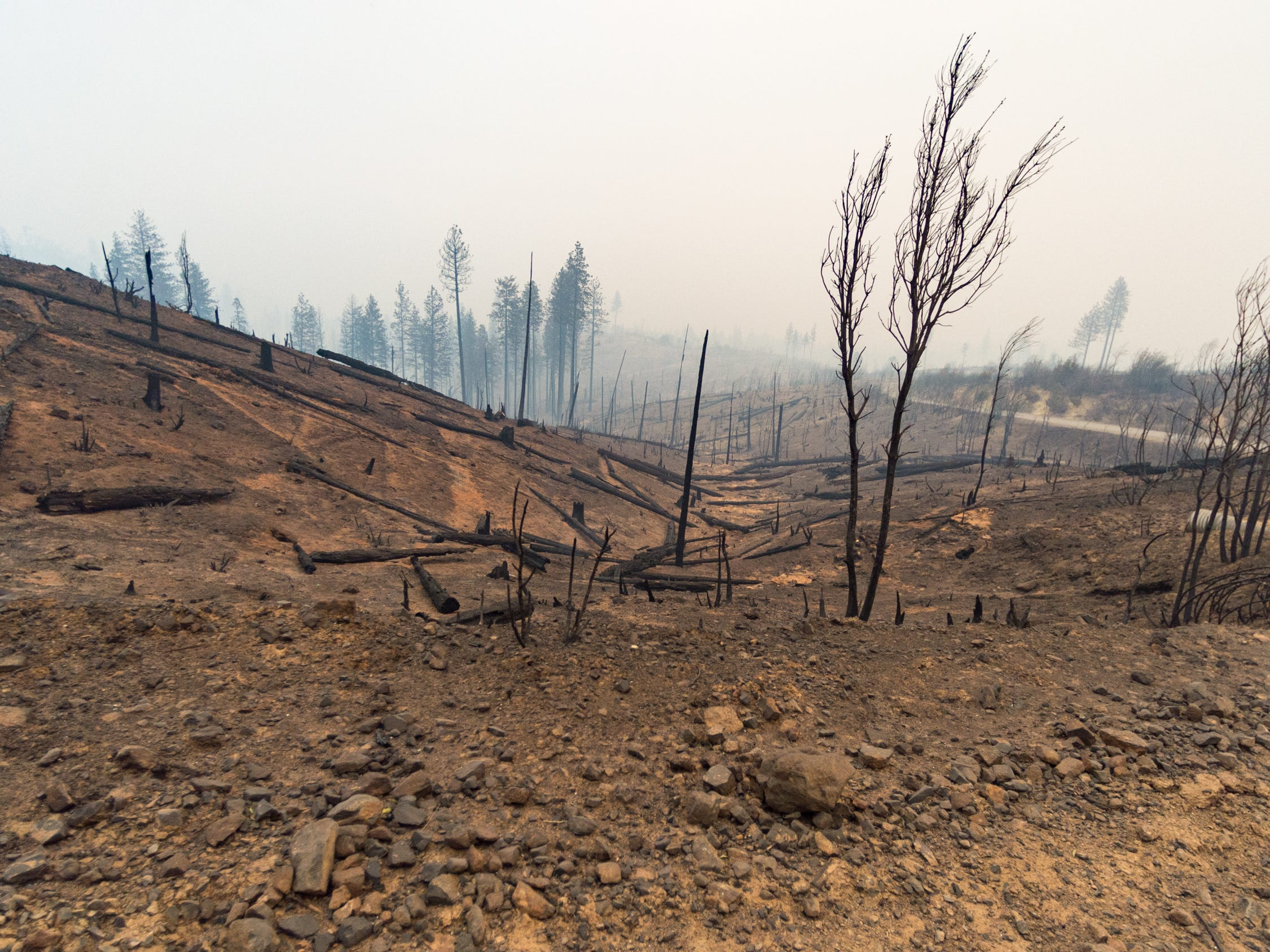 The Camp Fire causes extensive damage near Butte Valley, Calf., Monday, Nov. 12, 2018.