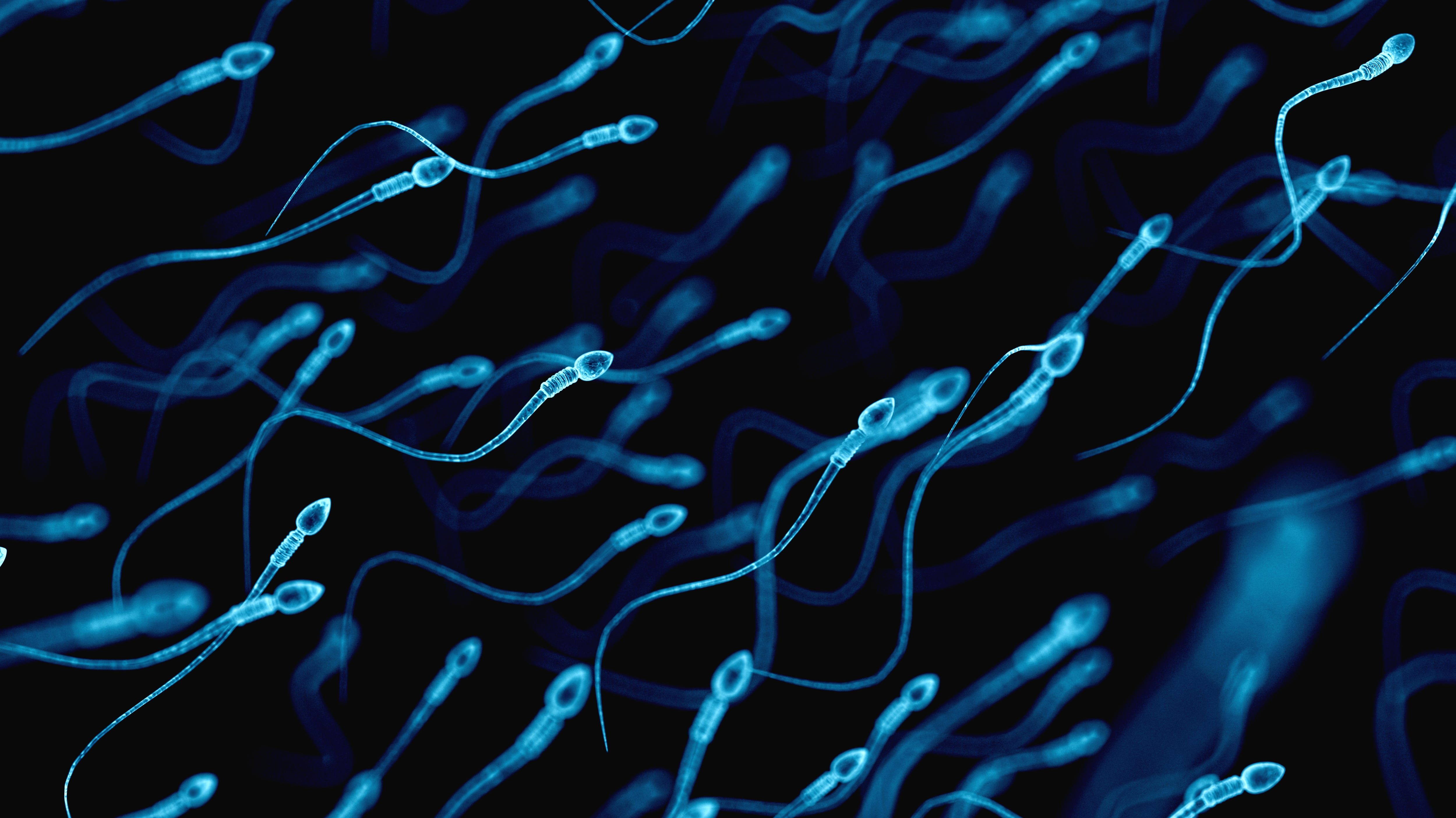 Could Climate Change Cause Infertility?