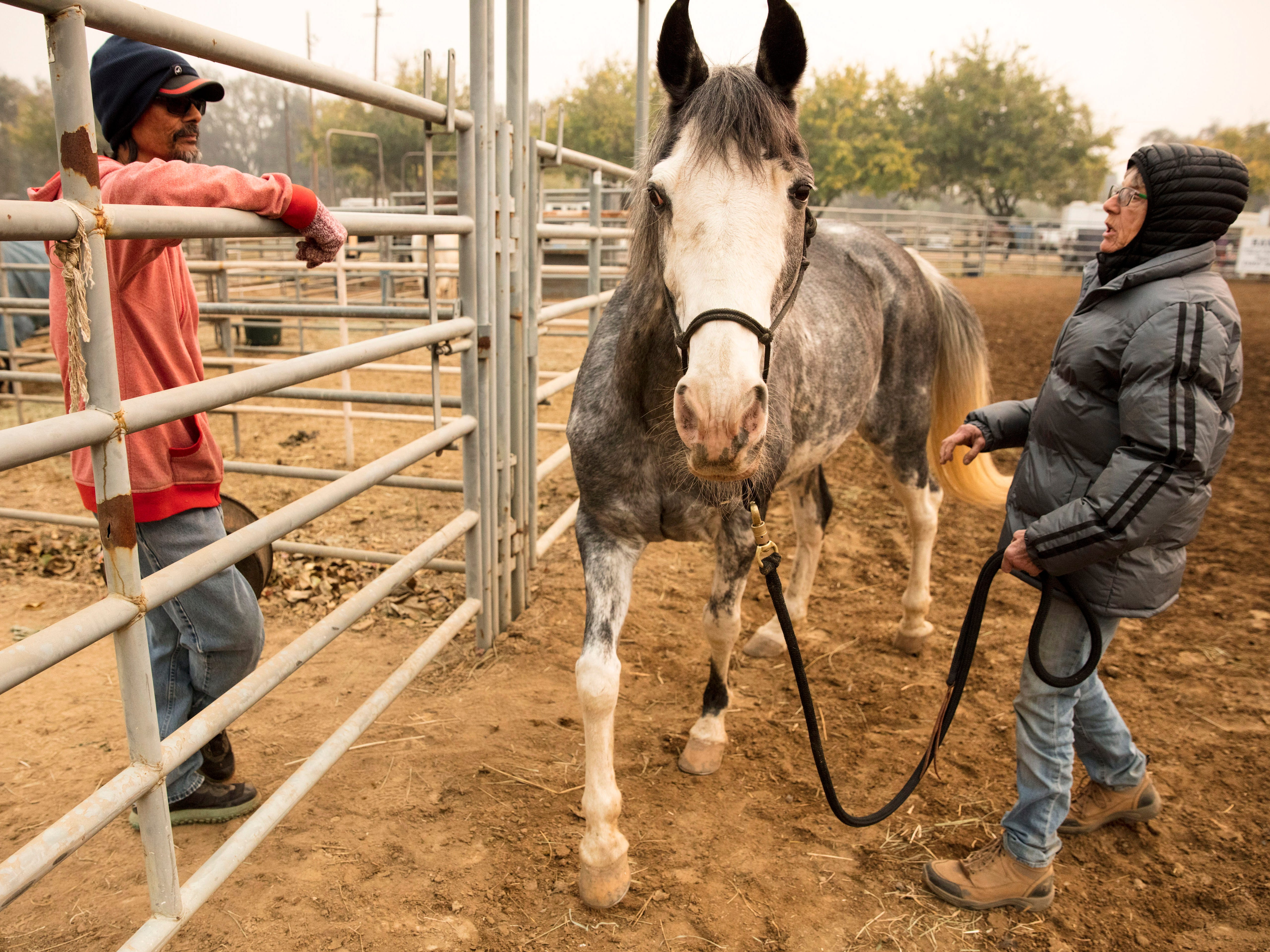 Nikki Borgoin chats with Richard Doynk, who also had his horse temporally penned with her horse, Josie, at the Butte County Fair Grounds where evacuees and there animals stay as the Camp Fire continues to burn in Butte County, Calif., Nov. 10, 2018.