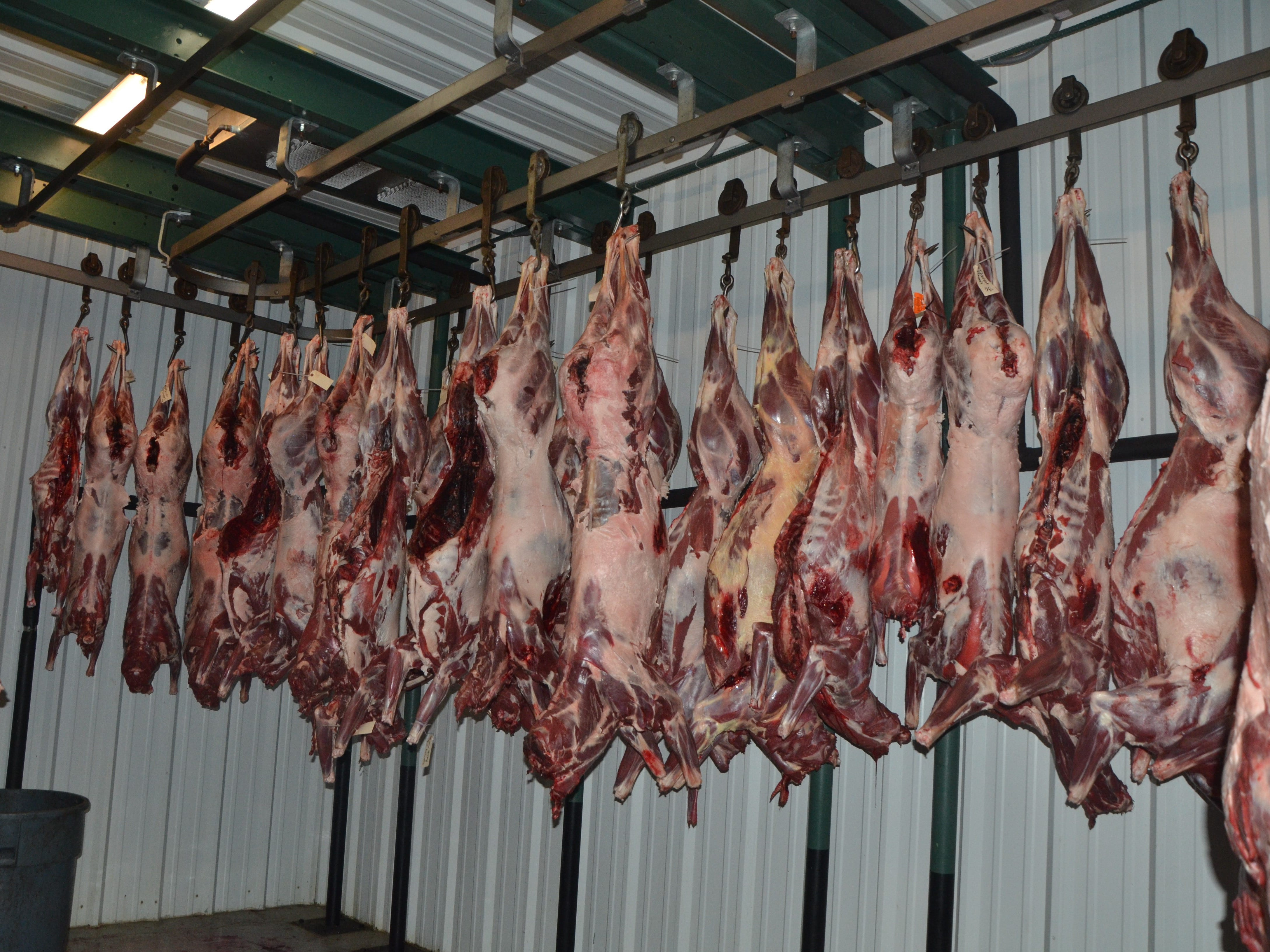 The meat freezer inside Whitetail Farms in Olivet.