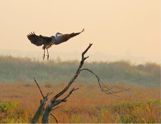 This photo by Manitowoc's Andy Berkhout took third place in the Mariners Trail photo contest.