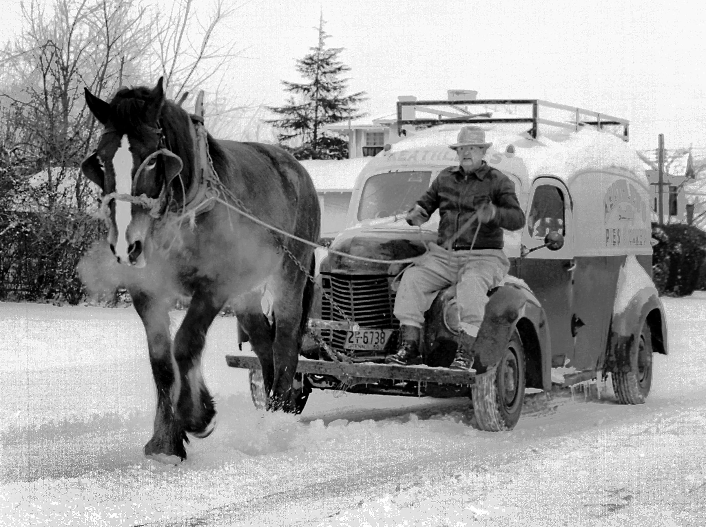 "February 1, 1951 - Intent on ""rescuing"" the stalled pie truck on February 1, 1951, the gentleman in the driver's seat was too busy at his task to give his name to a photographer.  The cameraman is certain of the horse's name as the driver called it many times as Maude trudged along North Highland near Summer Avenue.  The Mid-South struggled through an ice storm during early February, closing schools throughout the area."