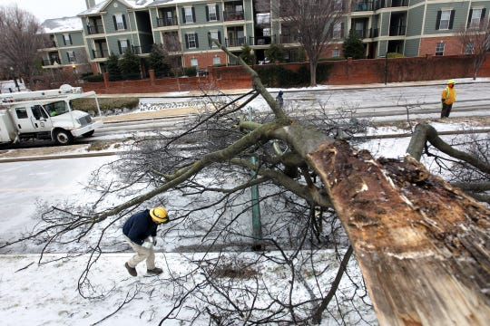 Feb. 16, 2015 -  An MLGW Technician and a City of Memphis work crew survey the scene where a downed tree knocked over a light post, blocking the bike lanes  and partially obstructing one lane of traffic at the top of Riverside Drive, near Georgia.