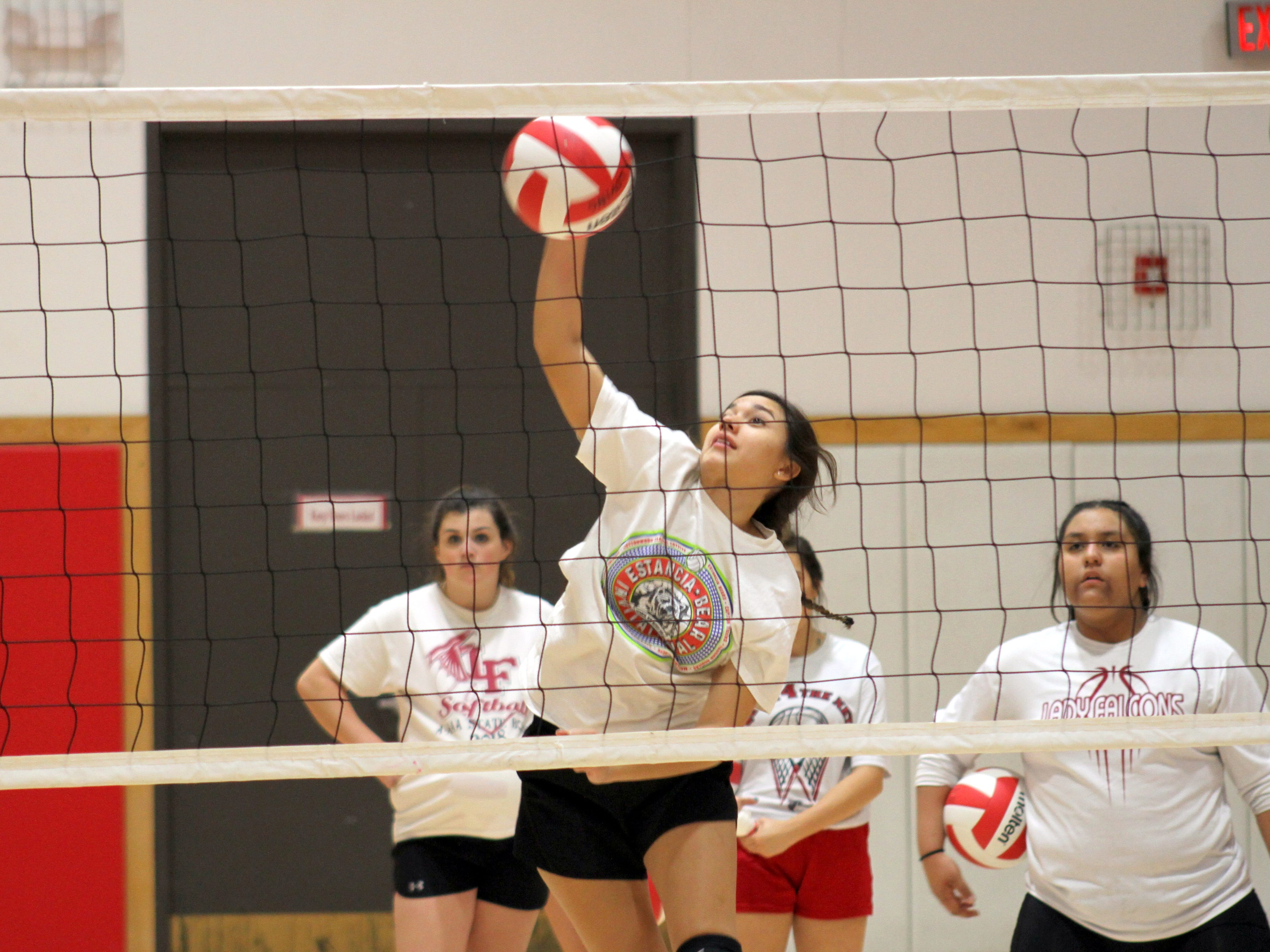 Chacon, Falcons look to make noise in volleyball state tournament