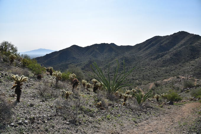 The Estrella Mountains on the far horizon, seen from the Pyrite Trail in Skyline Regional Park in Buckeye.