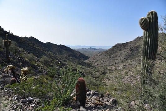 Pyrite Trail