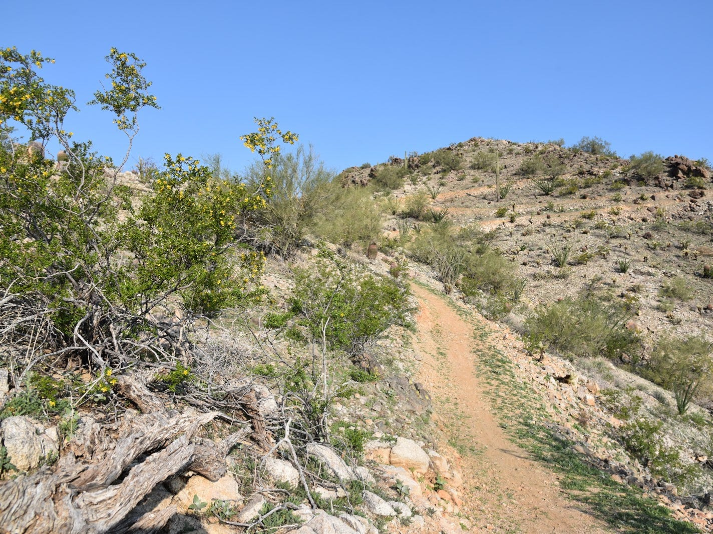 Switchbacks appear more difficult than they are.